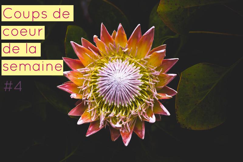 le-carnet-danne-so-coups-de-coeur-semaine-4