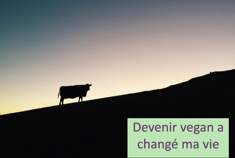 le-carnet-danne-so-devenir-vegan-a-change-ma-vie