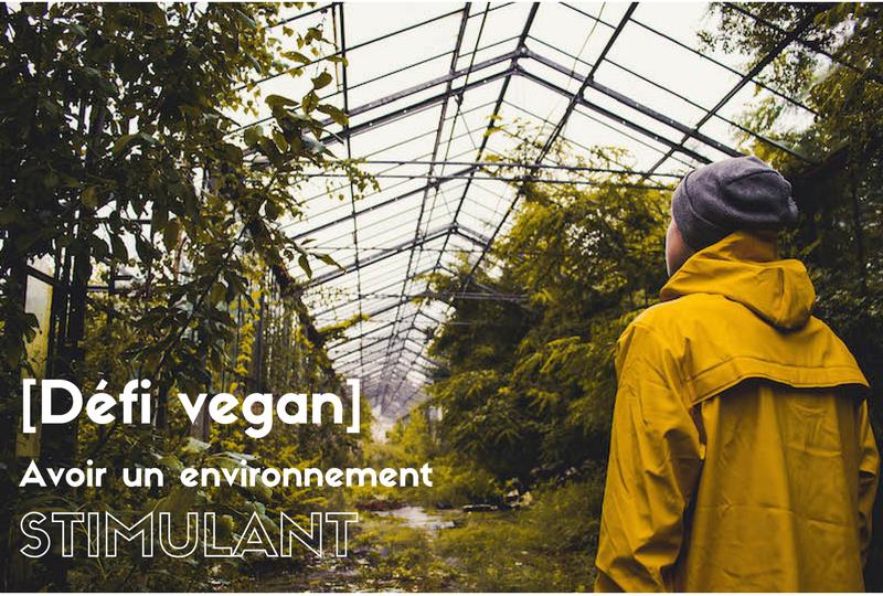 le-carnet-danne-so-defi-vegan-environnement-stimulant